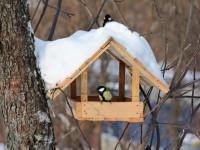 Как украсить кормушку для птиц своими руками — пошаговая инструкция с фото