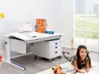 Столы для школьников — 120 фото лучших идей правильного выбора и сочетания с интерьером