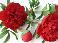 Простые объемные цветы из гофрированной бумаги своими руками