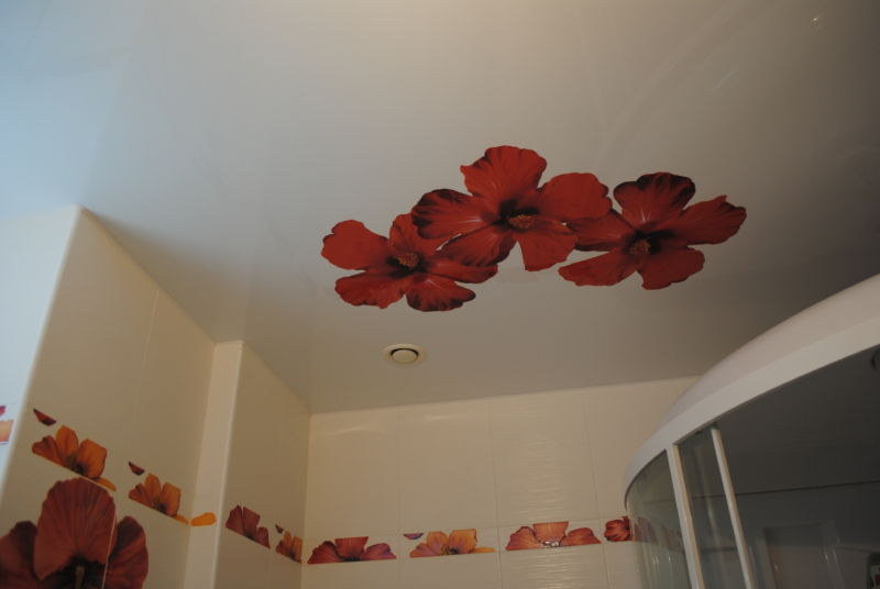 False_ceilings _ bathroom