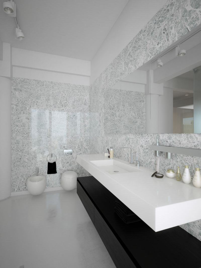black-white-contemporary-bathroom-design
