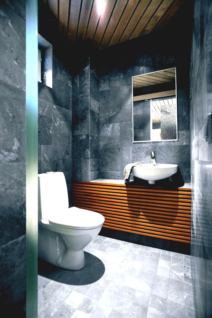 toilet_Design_2017