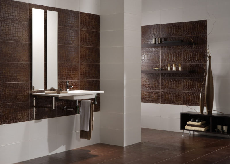 Decorating the bathroom tiles room 2017