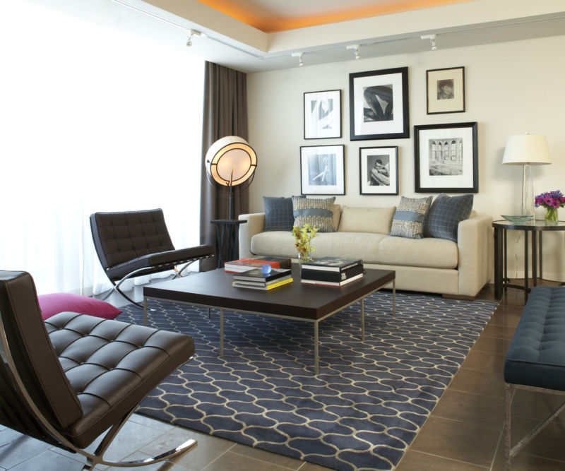 nice-living-room-area-rugs-contemporary