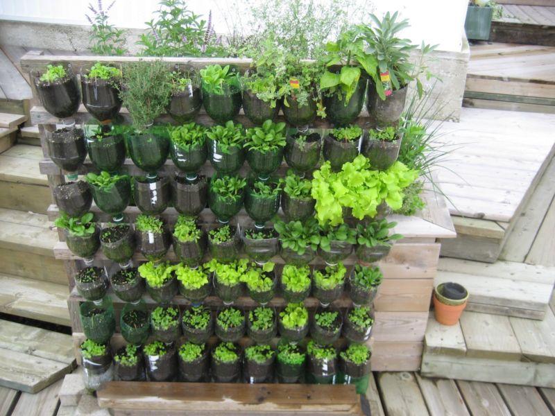 garden-vertical-gardening-ideas1600-x-1200-427-kb-jpeg-x