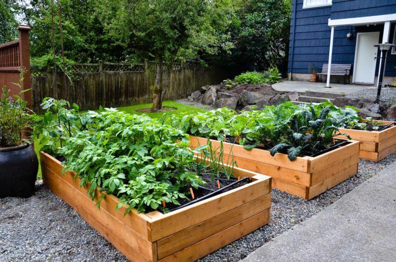 raised-garden-bed-design-ideas-l-15bc2d9725f7c8ac